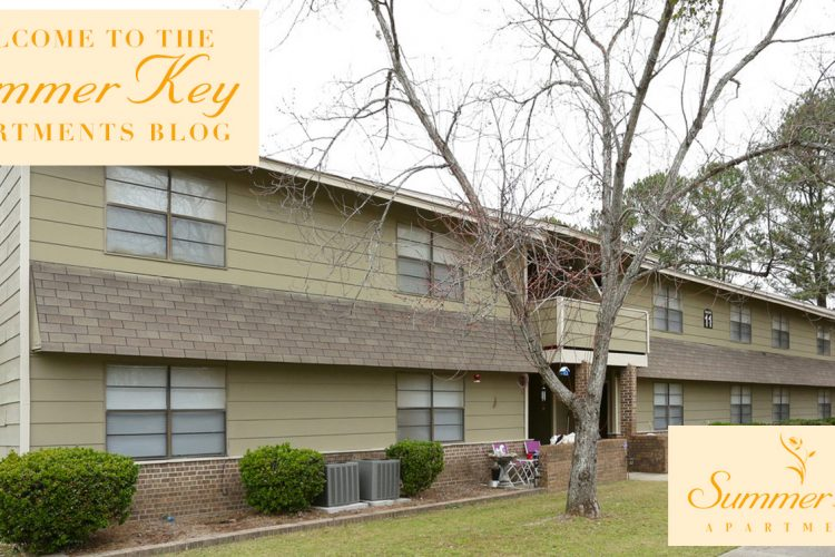 Welcome to the Summer Key Apartments Blog